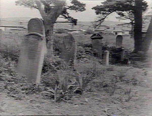 Gravestones of the Folly Cemetery courtesy of  Picman Database State Library