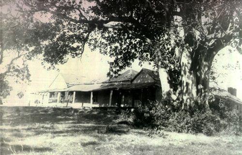 Waratah House